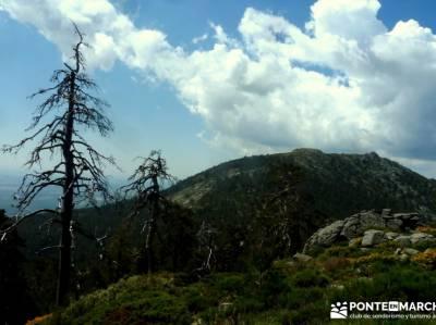 Peña Águila - DAS2015 - Federación Madrileña Montañismo; excursiones ; rutas madrid;viajes puen